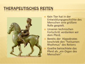 Warum das Pferd?